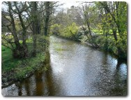 River Elwy, photo by Eirian Evans, available through Creative Commons